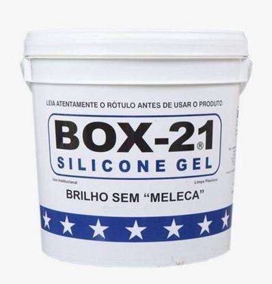 BOX 21 SILICONE GEL