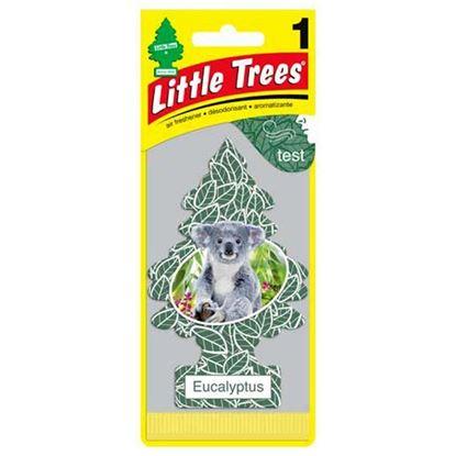 LITTLE TREES EUCALYPTUS